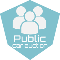 Public Car Auction