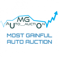 MGautoauction.com