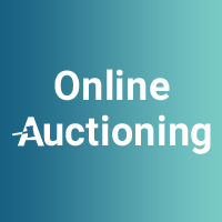 Online Auctioning